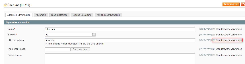 Magento Standardwerte bei Kategorien setzen
